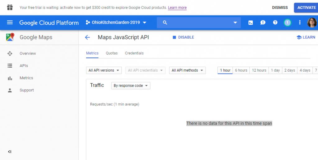 Screenshot showing the Maps JavaScript API enabled